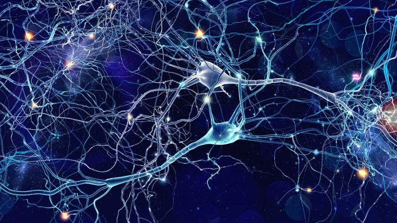 Neurons firing in the brain
