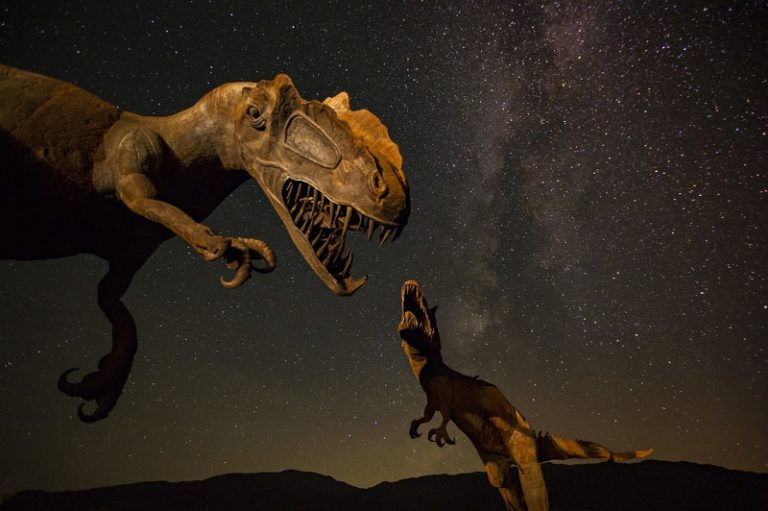 Two T-Rex dinosaurs